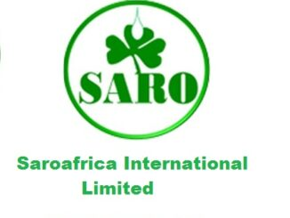Market Sales Representative Job at SaroAfrica International Limited